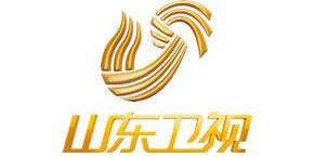山东卫视(高清)频道