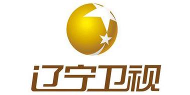 辽宁卫视频道