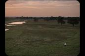 一周图说 |《绣春刀2》定档,韩国要拍周杰伦的老电影