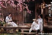如何评价电影《三生三世十里桃花》?