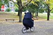 揭秘 | 历届东京国际电影节10大没获奖佳片