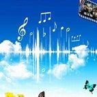 《音乐电影欣赏》海报