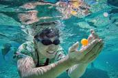 湖南卫视一群新闻人,4年绕地球6圈,为了什么?