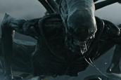 好莱坞暑期档大片时间表出炉,《银护2》打头阵,14部有望引进