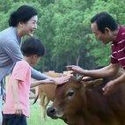 陈秀珍带于震轩去农家乐