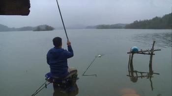 我的7日江湖2